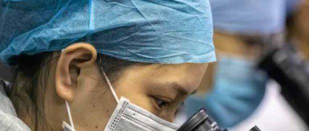 Из-за коронавируса наука может измениться к лучшему