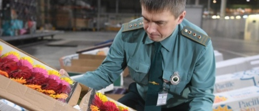 В цветах в «Кольцово» обнаружен опасный вирус