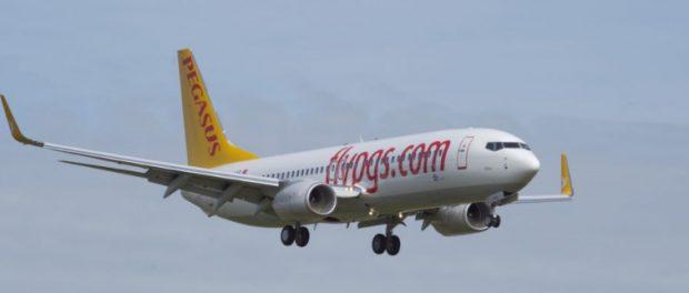 Еще один самолет Pegasus  в Турции рухнул на землю