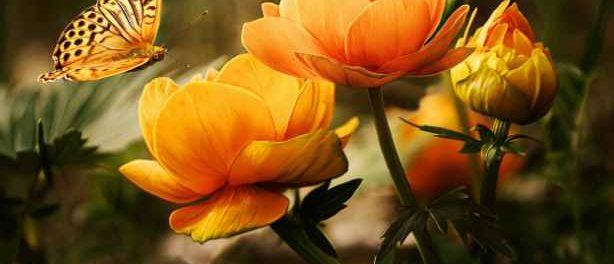 Онлайн заказ цветов в Екатеринбурге