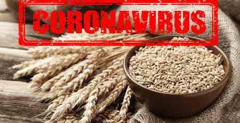 COVID-19 в мире наступает продовольственный кризис