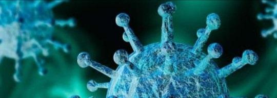 Как коронавирус разошелся по миру