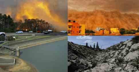 Землю накрывает глобальная засуха