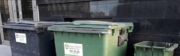 В мусорном баке нашли труп кубинской красавицы
