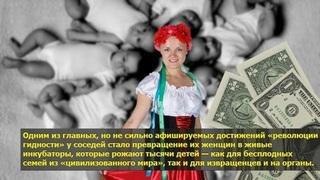 На Украине не знают, что делать с сотней младенцев «на экспорт»