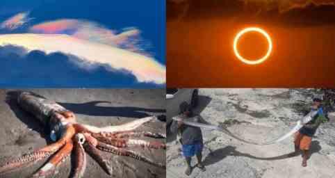 47 цикл Нибиру: землетрясение уже будет везде