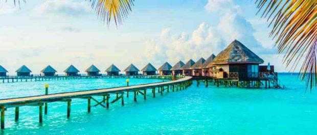 На Мальдивах проводится исследование брендов