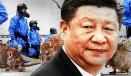 В Китае блокирован первый город из-за  бубонной чумы
