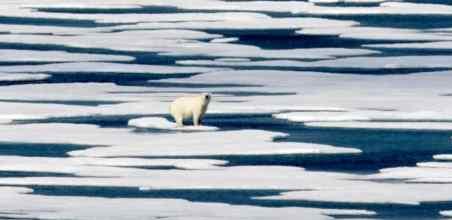 Человека убьет не вирус, а изменение климата