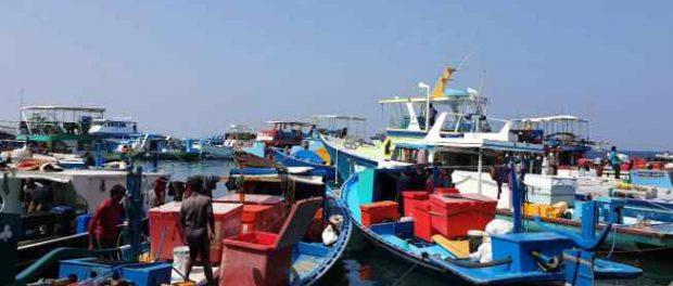 Мальдивы скоро потребуют отрицательного результата теста на Covid-19 по прибытии