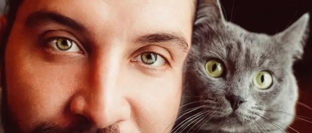 Что происходит, когда парни добавляют кошек на сайте знакомств